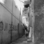 pierre bourdieu. imágenes de argelia