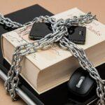 Vigilar y castigar en la era de Internet: la importancia de la libertad de expresión en la conquista de la justicia social