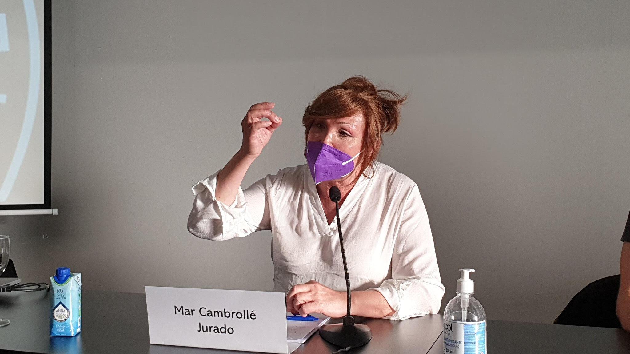 Mar Cambrollé participó en la mesa  Desarrollo de identidades disidentes y paradigmas de género del Congreso sobre Identidades