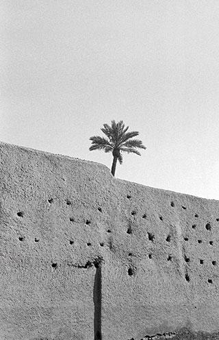 La reconfiguración del mundo árabe