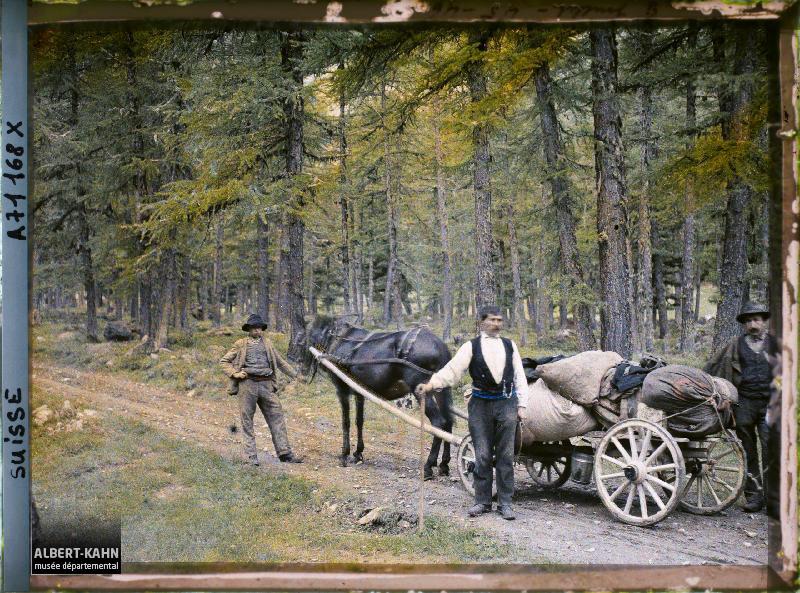 Trois hommes posent avec un cheval et une charrette dans une forêt, Pontresina, Suisse, 8 juillet 1912, (Autochrome, 9 x 12 cm), Auguste Léon, Département des Hauts-de-Seine, musée Albert-Kahn, Archives de la Planète, A 71 168