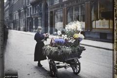 France, Paris, Marchande de fleurs Boulevard de la Madeleine