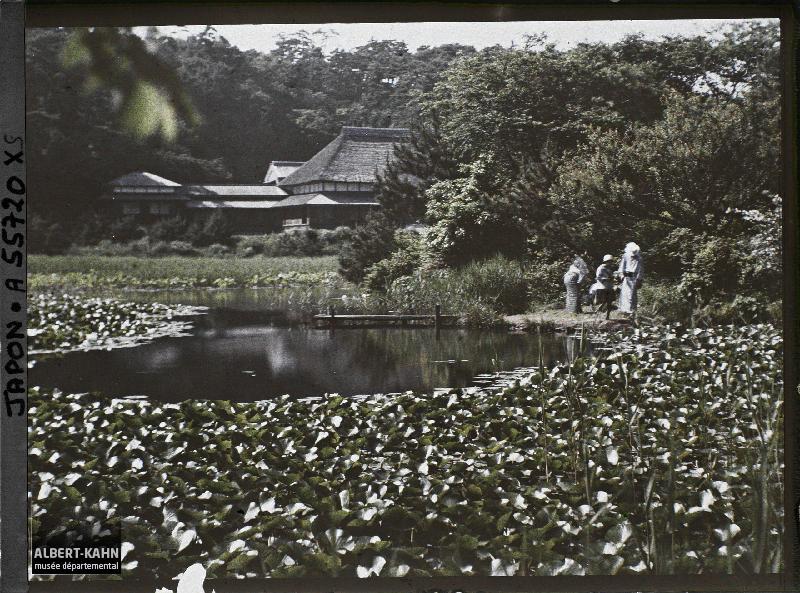 Japon, Yokohama, Paysage à Sankei-en