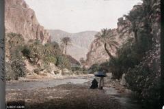 El Kantara, Paysage
