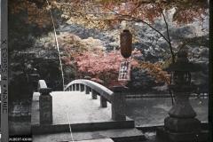 Japon, Kyoto, Nazen-ji, Paysages d'automne, Vues diverses