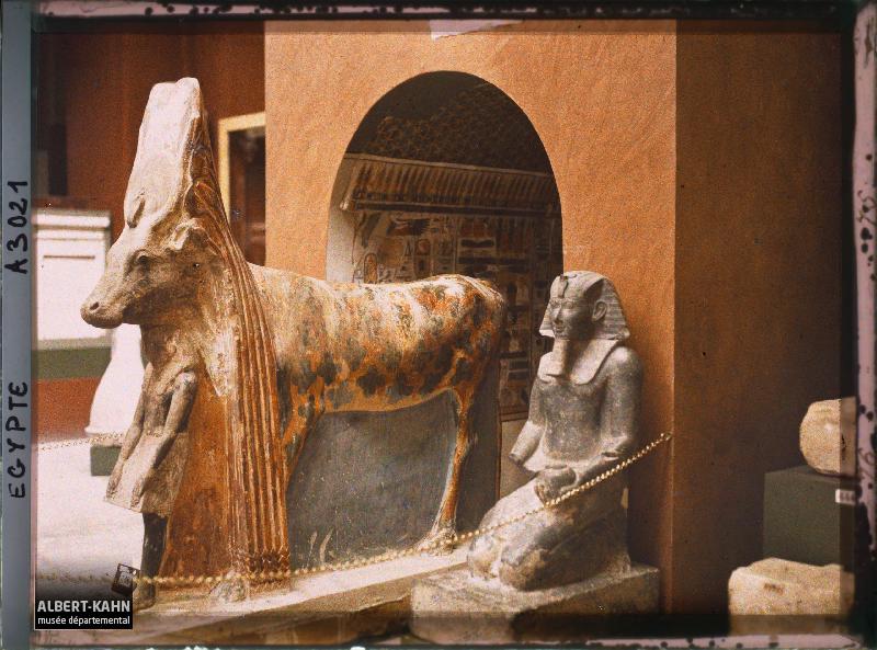Egypte, Musée du Caire, La Vache Hator et son sanctuaire