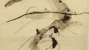 John Berger y Marisa Camino | Como crece una pluma