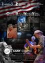 CSNY / Déjà vu
