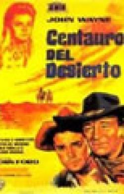CENTAUROS DEL DESIERTO (THE SEARCHERS)