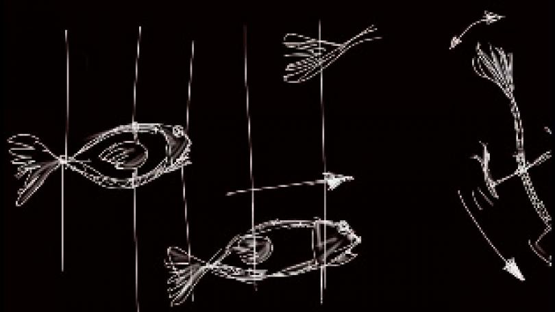 Vida acuática | Ferroluar