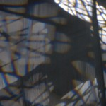 Taller de Arte Actual | Cuentos que nunca cuentan
