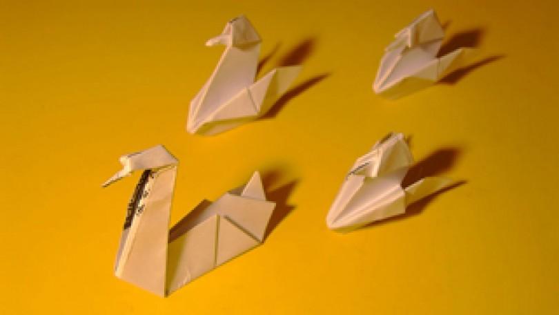 Talleres de verano para niños | Origami 9 – 12 años