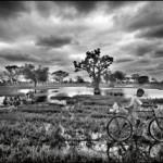 Viajes fotográficos: dos miradas sobre África   Albert Masó y Gabriel Brau