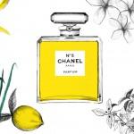 Taller de iniciación al perfume para niños    9-12 años