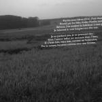 Cátedra Acciona. María Filomena Molder: Los Tres Reyes Magos de Rimbaud y los juegos de lenguaje de Wittgenstein