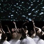 Danza: Floating Flowers