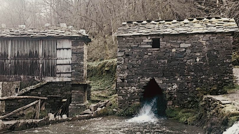 Recital de primavera: El lenguaje del agua