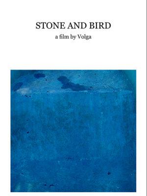 Piedra y pájaro