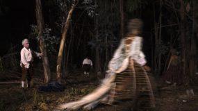 Estreno: Liberté, de Albert Serra
