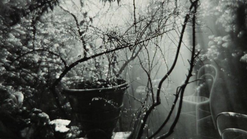 Catálogo de Josef Sudek #Primavera #Yo me quedo en casa