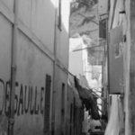 Transmagrebina. Pierre Bourdieu | Radio Círculo #Yomequedoencasa