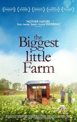 My Big Little Farm