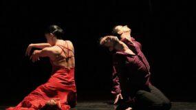 Muestra Estrena Escena: Danza Madrileña