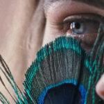 Estreno: La metamorfosis de los pájaros, de Catarina Vasconcelos